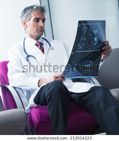 Expert young male doctor examining x-ray test. - stock photo