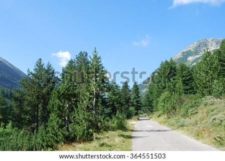 Explore the mountain, Pirin National Park, Bulgaria, Eastern Europe  - stock photo