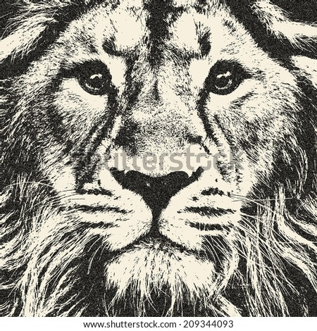 Expressive face of a lion. The King of beasts, biggest cat and most dangerous predator of the world. Great for user pic, icon, label or tattoo. Amazing illustration in grunge style. Zodiac symbol. - stock photo