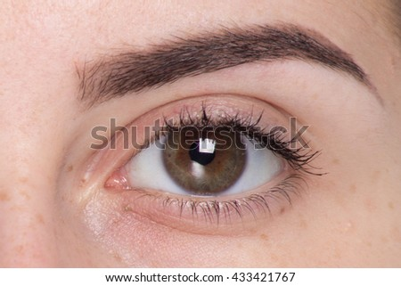 Expressive significant eye, perfect shape of eyebrow after correction, beauty salon pull out, have hair thinned out, care review of the eyes, light brown coloring natural procedure. Young clean skin - stock photo