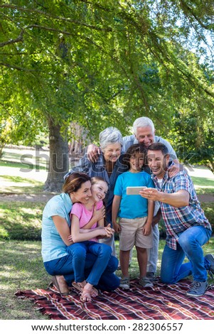 Extended family taking a selfie in the park on a sunny day - stock photo