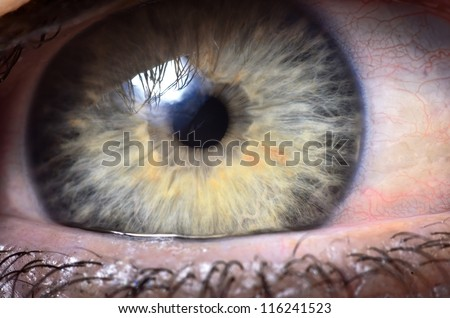 extreme close up to a human eye - stock photo