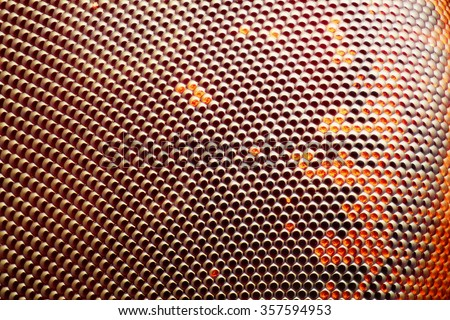 Extreme sharp and detailed fly compound eye surface taken at extreme magnification with microscope objective stacked from more photos into one sharp photo - stock photo