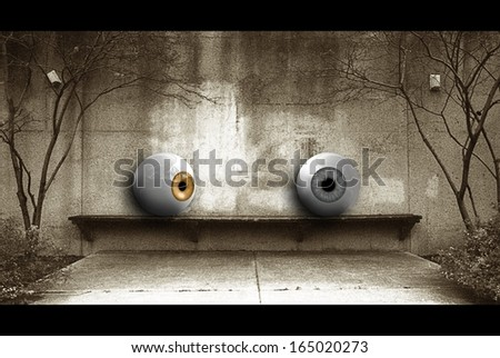 Eye Spy - stock photo