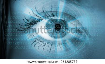Eye viewing digital information. Conceptual image. - stock photo