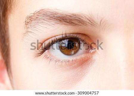 Eye with beautiful long lashes, brown, close-up macro. - stock photo