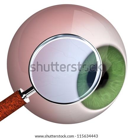 Eye with loupe on the white background. - stock photo