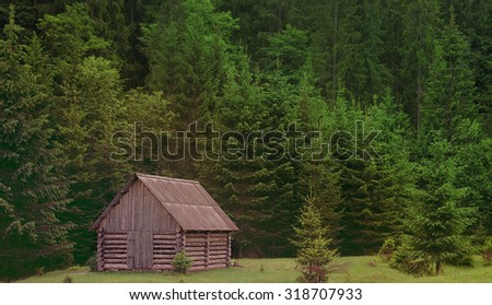 fabulous wooden house among dense forest, wild, no civilization, Carpathian forests, europe, nature - stock photo