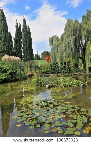 Fabulously beautiful Italian garden Sigurta. A pond with blossoming lilies. In the mirror of waters reflected cypress - stock photo