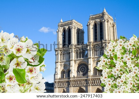 facade of Notre Dame  cathedral church at spring, Paris, France - stock photo