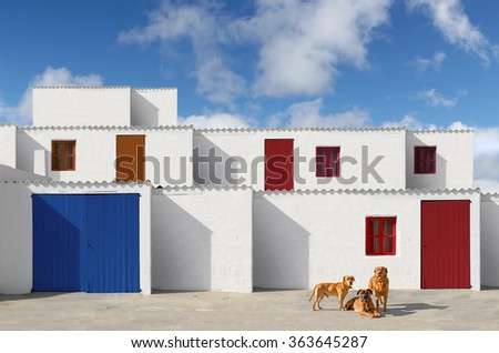 facades of houses with white wall and painted wooden doors and dogs - stock photo