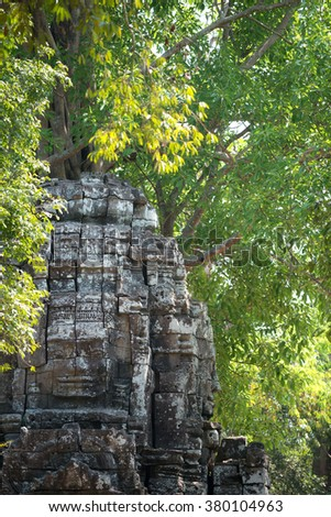 Face amongst the trees, Siem Reap, Cambodia - stock photo