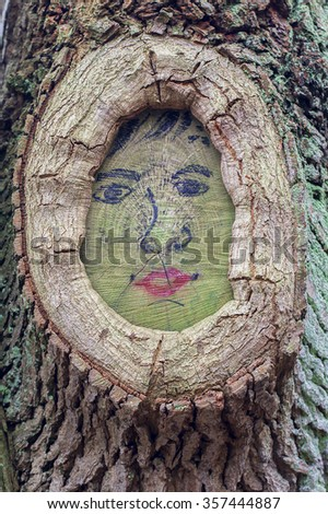 Face - twig scar - stock photo