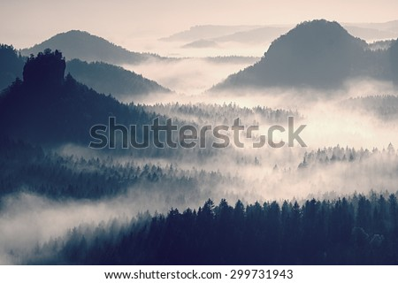 Fairy daybreak in a beautiful hills. Peaks of hills are sticking out from foggy background, the fog is yellow and orange due to sun rays. The fog is swinging between trees. - stock photo