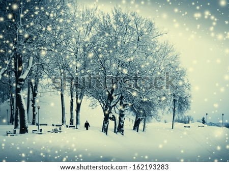 Fairy Landscape with frozen trees/ Christmas background - stock photo