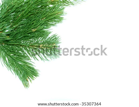 Fake fir tree decoration with white background for text - stock photo