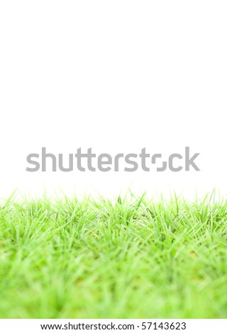 Fake Green Small Bladed Grass with Custom Space - stock photo