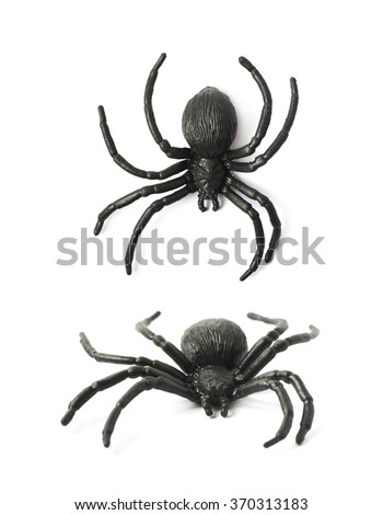 Fake rubber spider toy isolated - stock photo