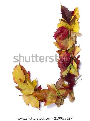 Fall alphabet letter J - stock photo