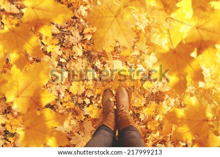 Fall, autumn, leaves, legs and shoes. Conceptual image of legs in boots on the autumn leaves. Feet shoes walking in nature   - stock photo