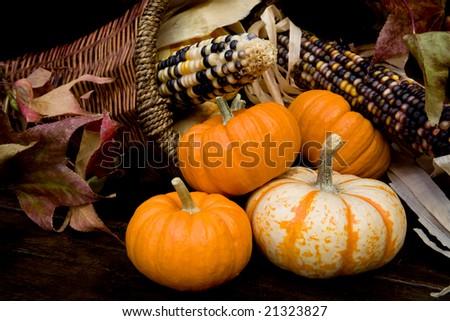 Fall Beauty - stock photo