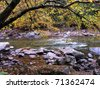 Fall color, Williams River, Monongahela National Forest, West Virginia, USA - stock photo