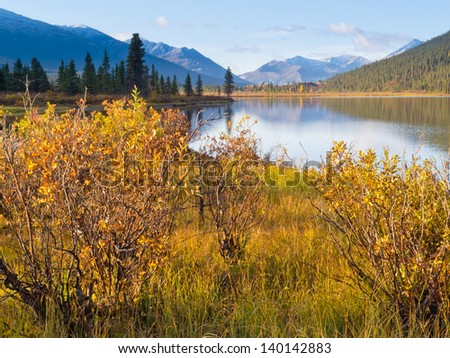 Fall colored willows at the shore of beautiful scenic Lapie Lake  Yukon Territory  Canada - stock photo