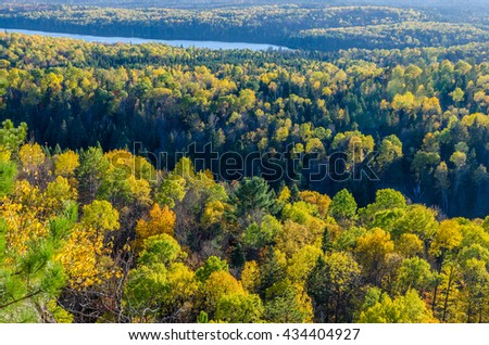Fall colorful trees in Algonquin park . Ontario, Canada - stock photo