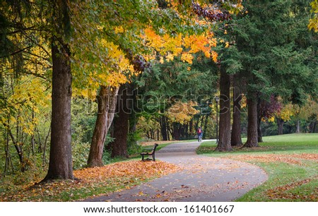 Fall colors explode as a lone bicyclist can be seen in the distance riding along the riverfront bike path in Eugene, Oregon. - stock photo