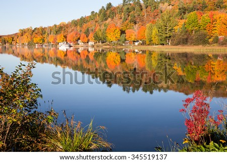 Fall Colors in a Calm Lake Framed by Bushes - Brilliant fall colors reflected in a smooth, calm lake.  Photographed in morning light.  Foreground bushes frame the scene and draw the viewer in. - stock photo