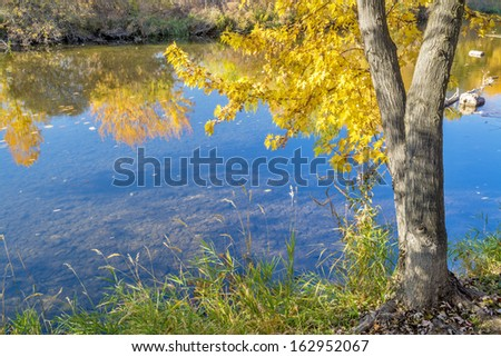 Fall colors in the trees and a wild river - stock photo