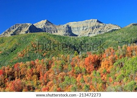 Fall colors in the Wasatch Mountains, Utah, USA. - stock photo