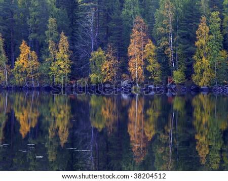fall colors, koli national park, finland - stock photo