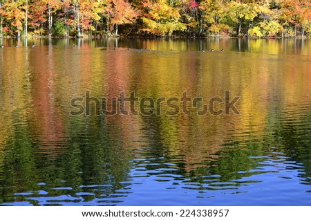 Fall foliage and a hint of blue sky partially reflected on pond in New England - stock photo