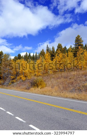 Fall foliage, driving with Autumn colors and blue sky - stock photo