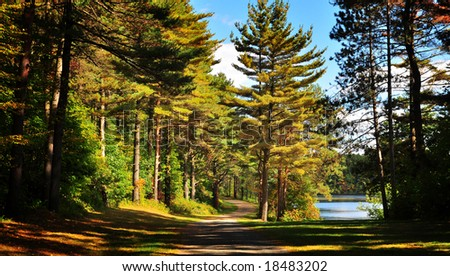 Fall in New England - stock photo