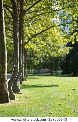 Fall in the Park                     - stock photo