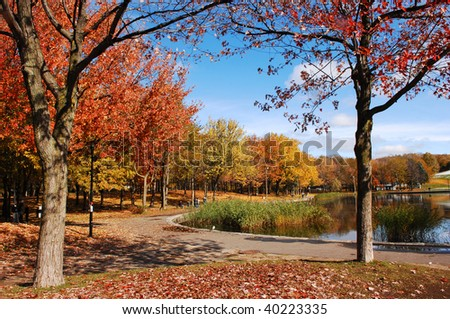 Fall in the park with very colorful trees, blue sky and a lake in Montreal at Mount Royal. - stock photo