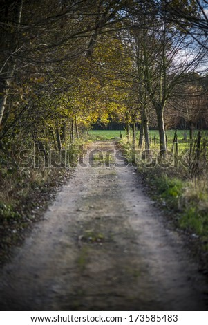 Fall landscape (Belgium, Flanders) - stock photo