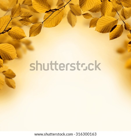 Fall leaves background with branches of brown autumn leaves  - stock photo