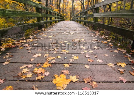 Fall Leaves on a wooden bridge in the forest Sharon Woods Gorge State Nature Preserve, Cincinnati, Ohio - stock photo