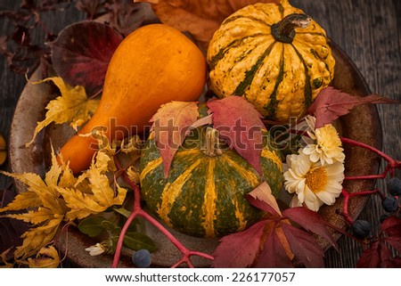 Fall pumpkin and decorative squash with autumn leaves - stock photo