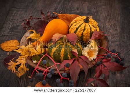 Fall pumpkin and decorative squash with autumn leaves on a rustic plate - stock photo