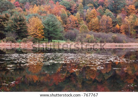 Fall Reflections - stock photo