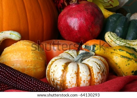 Fall's Harvest - stock photo