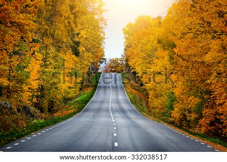Fall scenic road in Sweden - stock photo