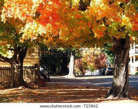 Fall Street in Old Salem - stock photo