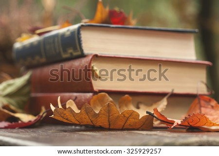 fallen autumn leaves and books in a wooden garden table  - stock photo