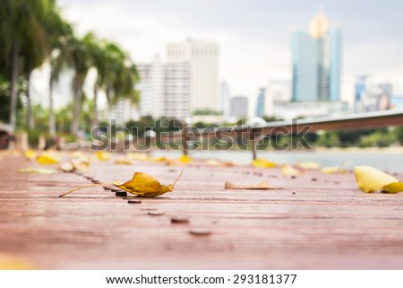 Fallen autumn leaves laying on the ground with city view - stock photo