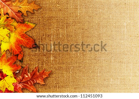 Fallen foliage over old hessian fabric, abstract autumn backgrounds - stock photo